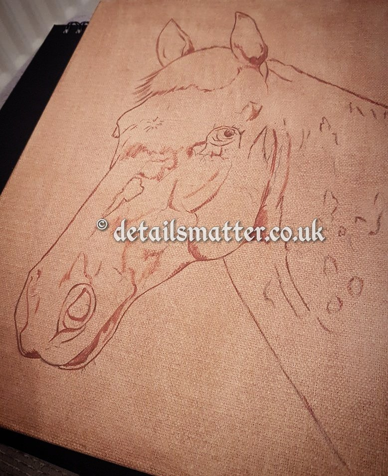 Sepia horse sketch on burnt umber canvas